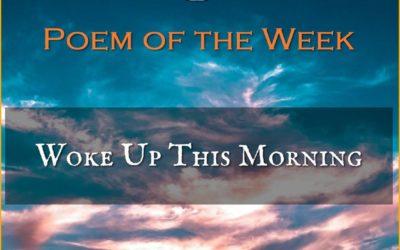My 'Poem of the Week' on Poet's Dream